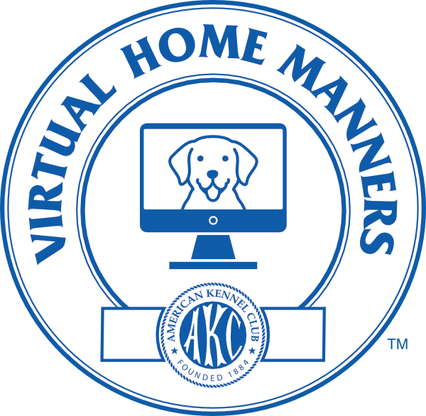 Virtual Home Manners
